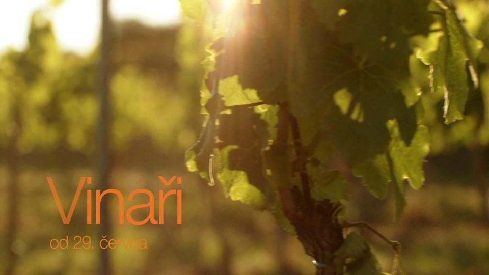 Vinaři (1) - upoutávka