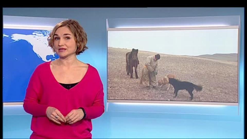 SVĚT: Ovce, pes a levhart, Mongolsko