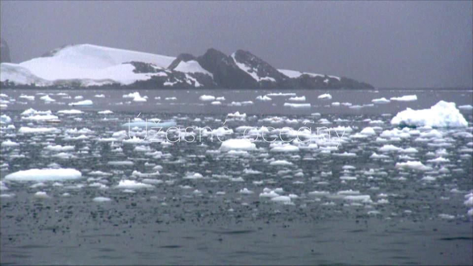Tuleň leopardí: Pán ledu - upoutávka