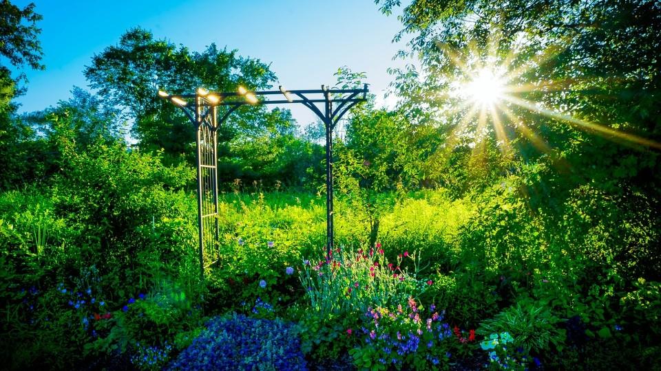 Zahrada, kde bydlí nejen člověk