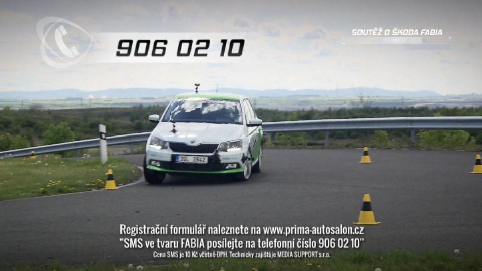 Autosalon 2015 (21)
