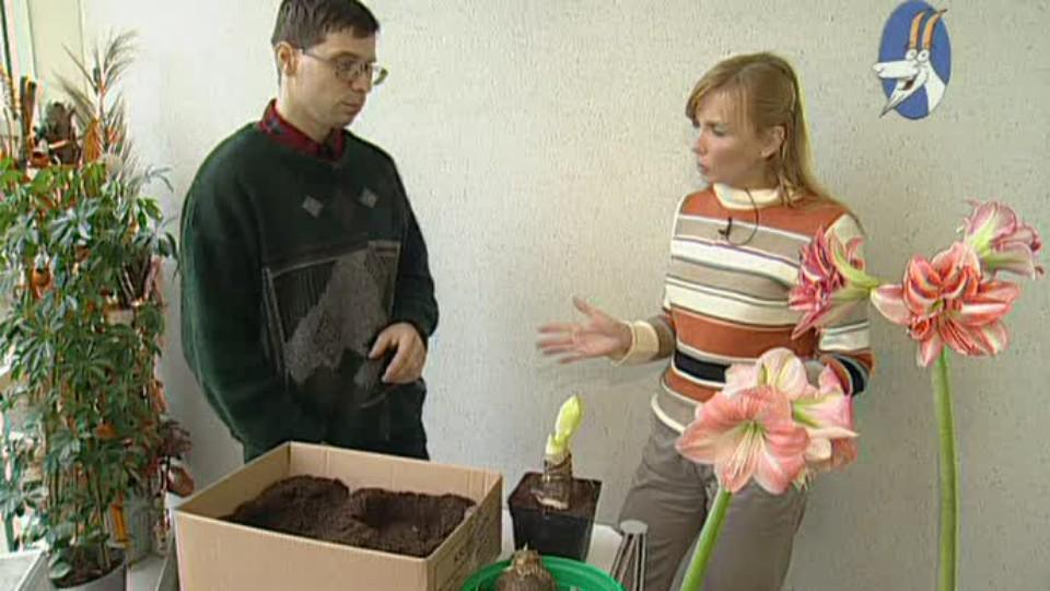 Receptář prima nápadů 2005 (14)