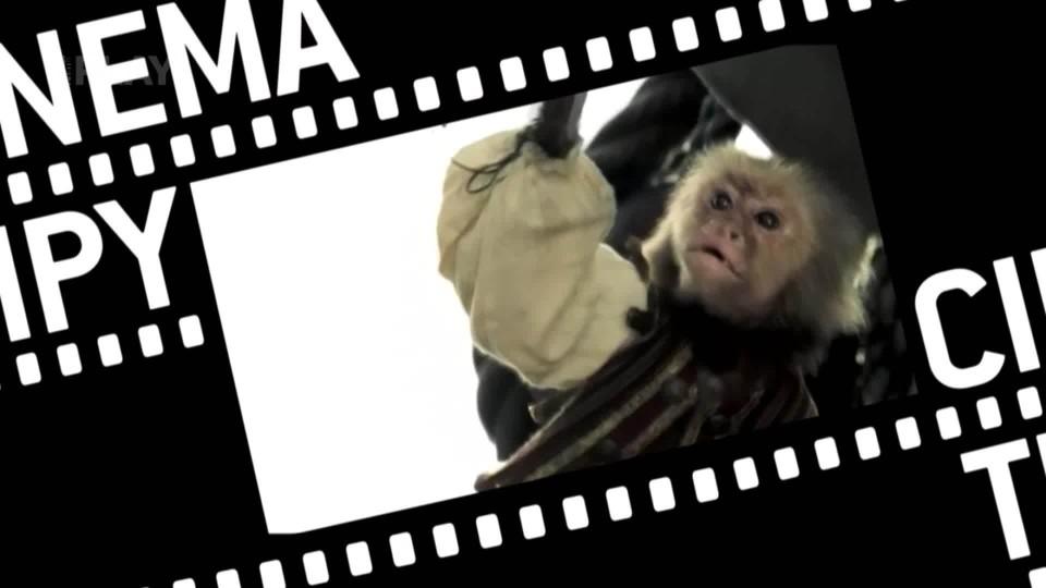 Cinema Tipy (11)
