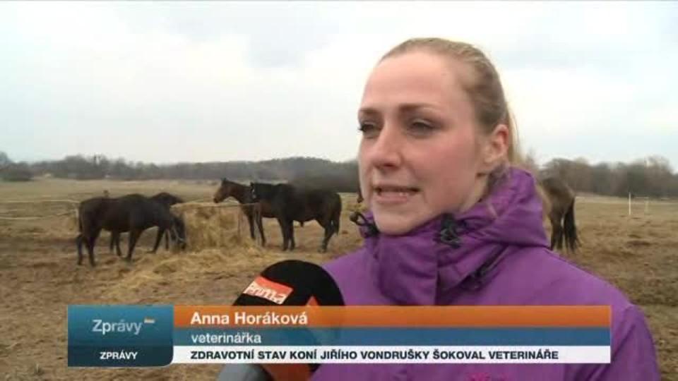 Zdravotní stav koní Jiřího Vondrušky šokoval veterináře