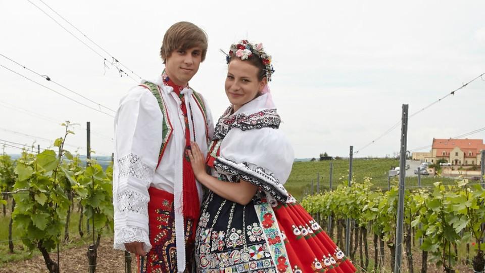 Vinaři I (8) - Nová generace