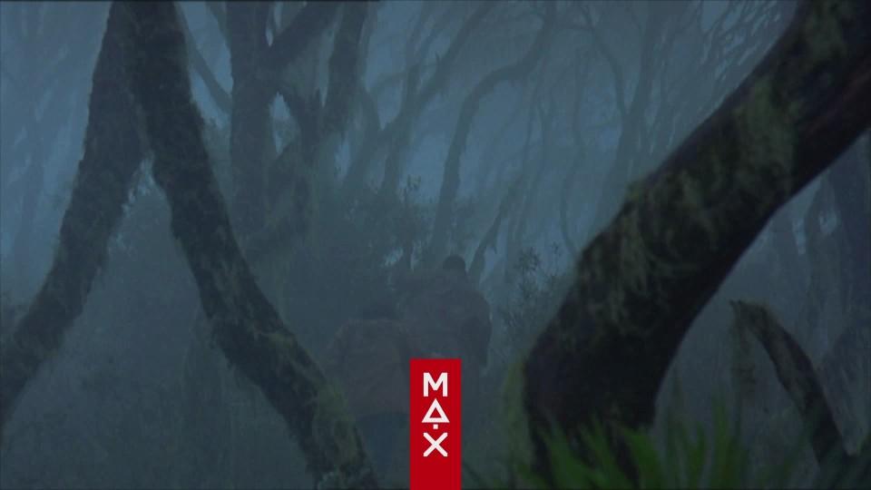 Gorily v mlze - Příběh Dian Fosseyové - upoutávka