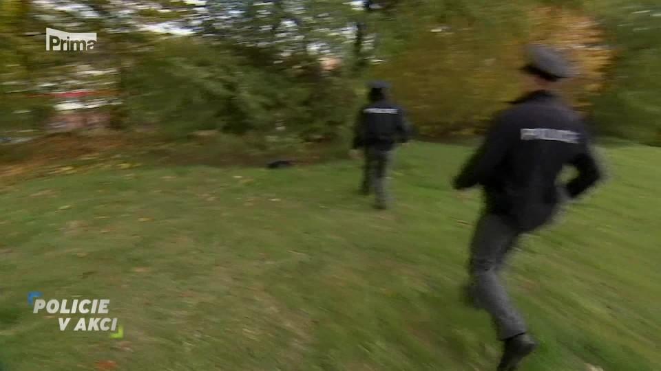 Šikana  - Policie v akci