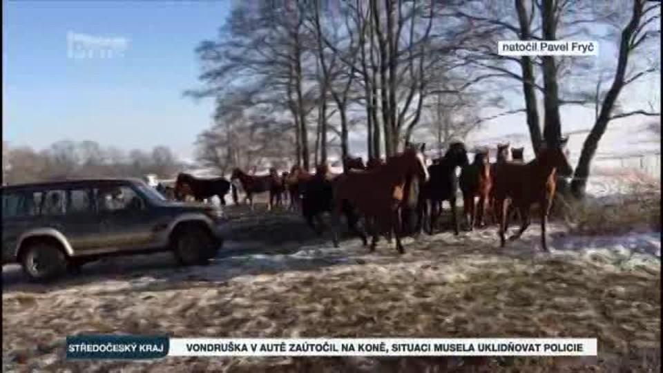 Vondruška v autě zaútočil na koně, situaci musela uklidňovat policie
