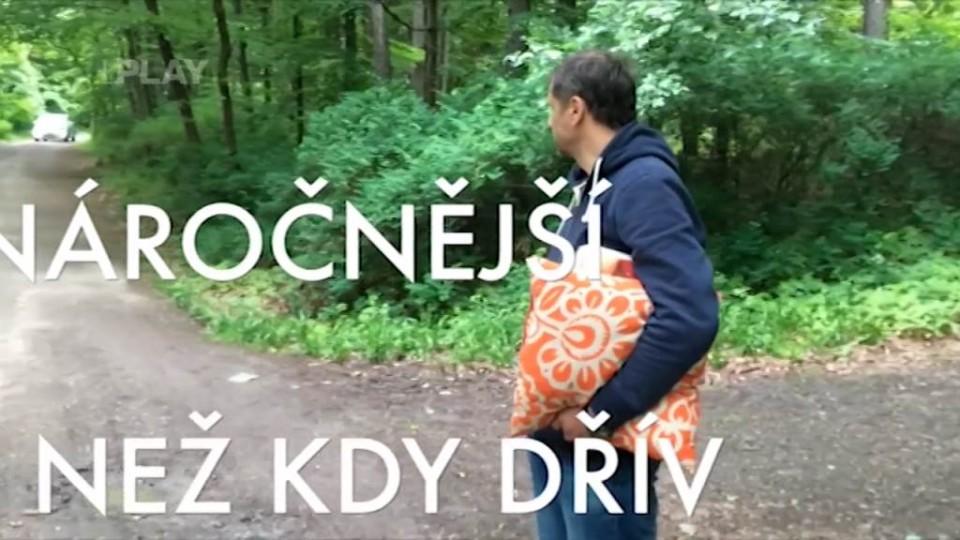 Partička - Cesta na Konopiště