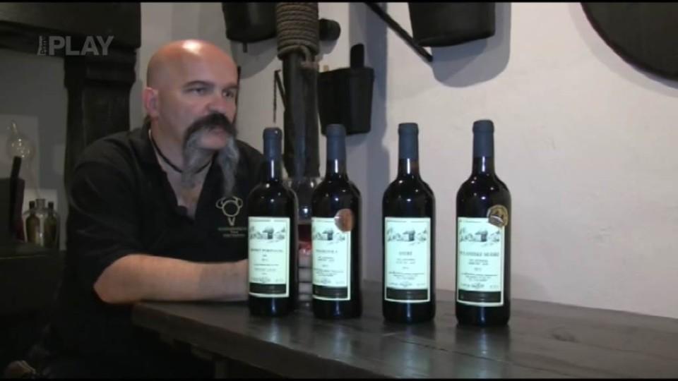 Víno z 8. epizody: Rulandské modré