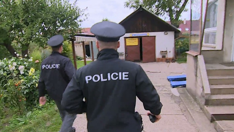 Policie v akci (24)