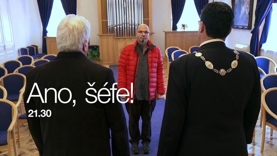 Ano, šéfe! VII (7) - upoutávka