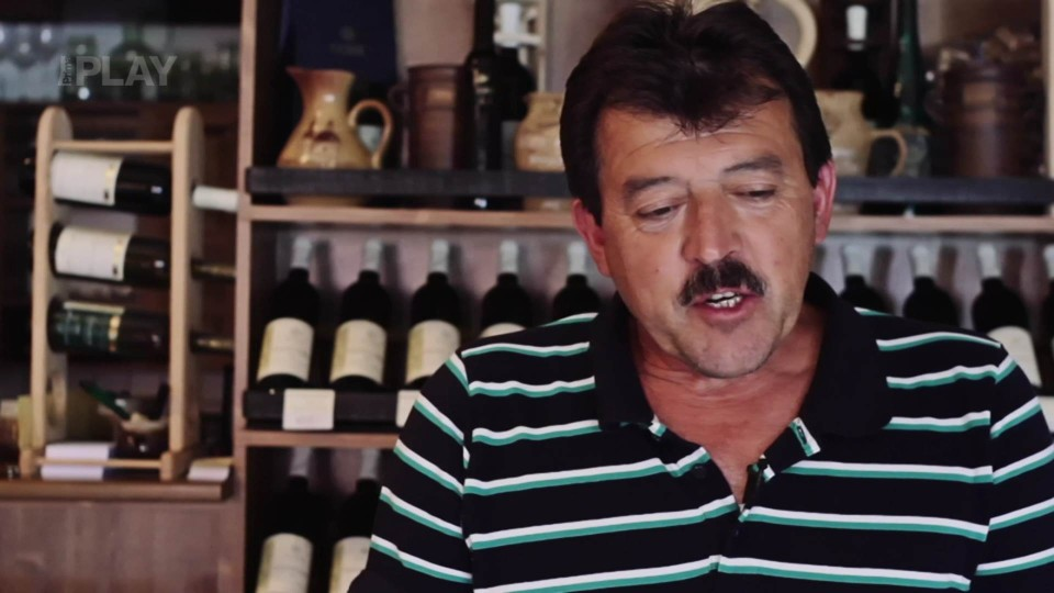 Víno z 13. epizody: Chardonnay