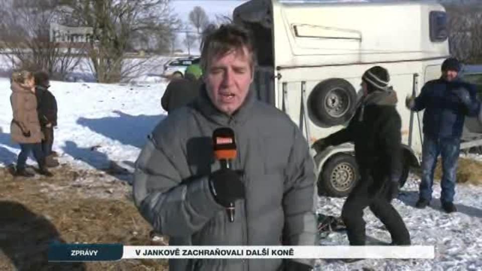 V Jankově zachraňovali další koně