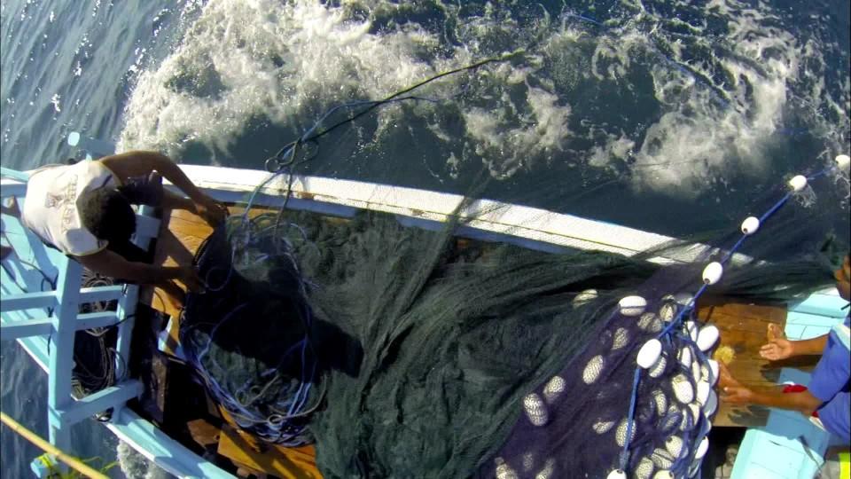 Lovci jižních moří (1) - upoutávka