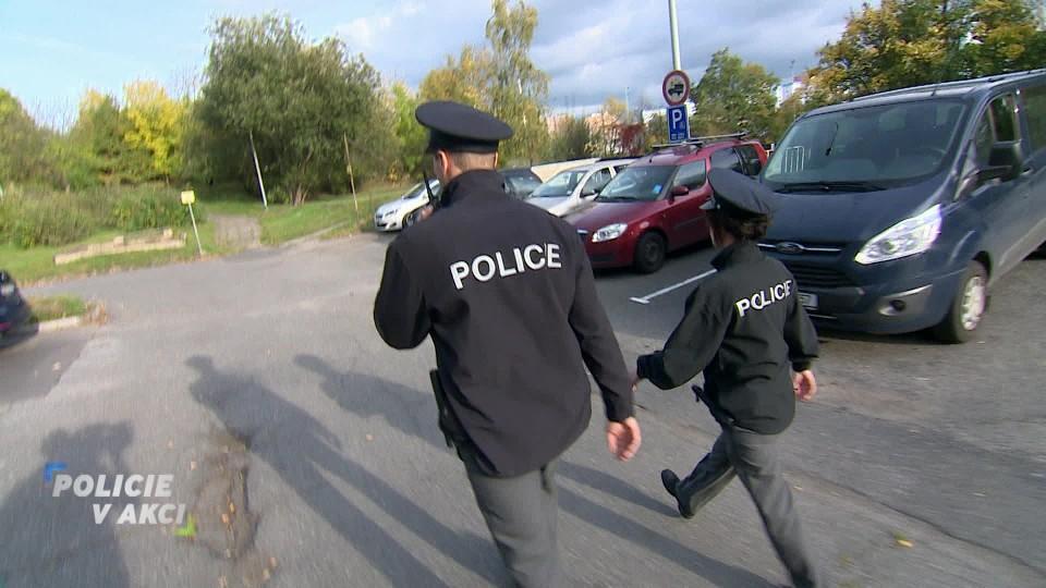 Policie v akci (31)