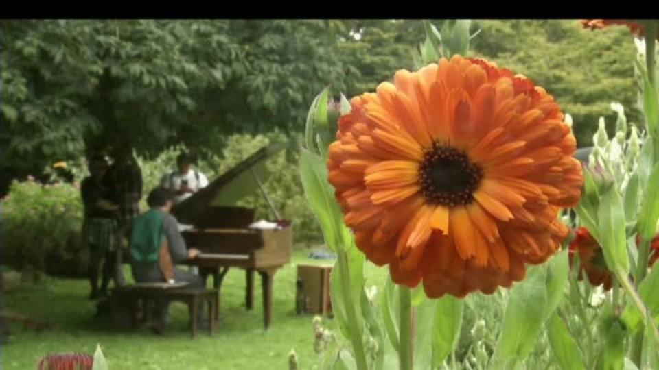 SVĚT: Klavír v botanické zahradě