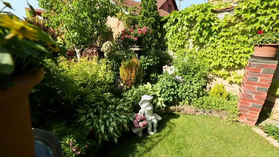 Zahrada s fuchsiemi