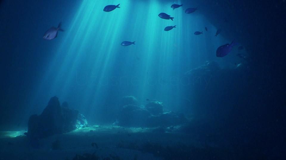 Podmořské poklady Nového Zélandu (1) - upoutávka