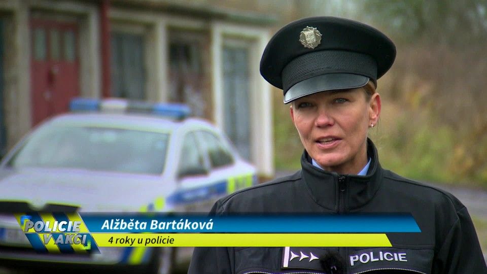 Policie v akci (47)