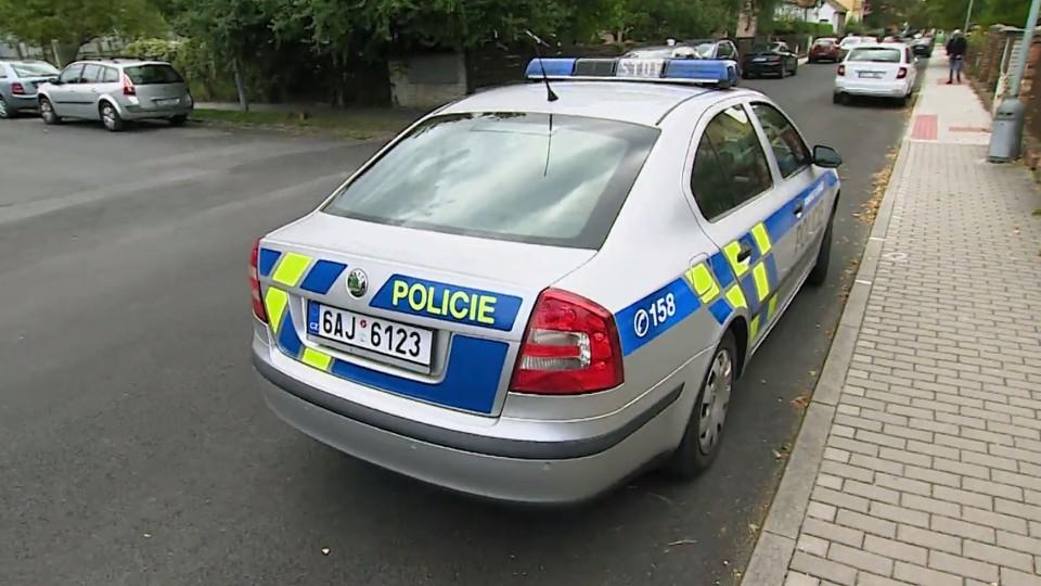Policie v akci (25)