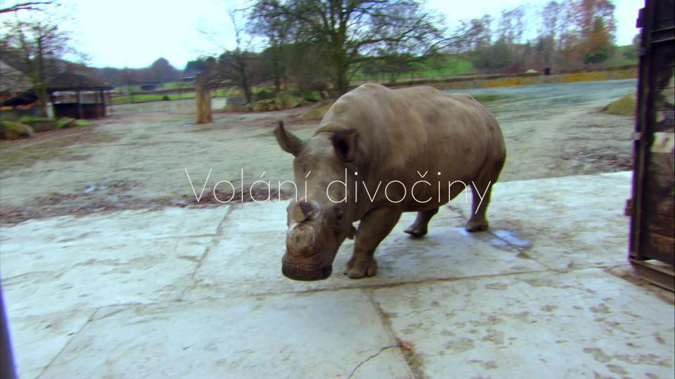 Návrat nosorožce - upoutávka