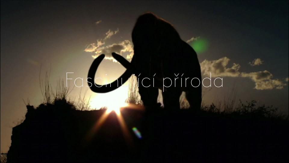 Past na mastodonta - upoutávka