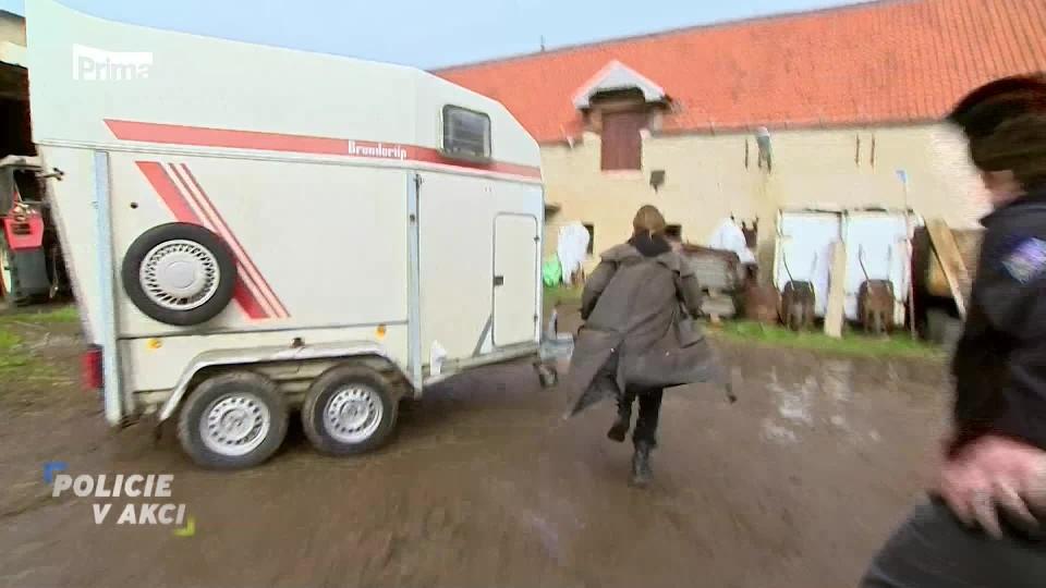 Krádež koně - Policie v akci
