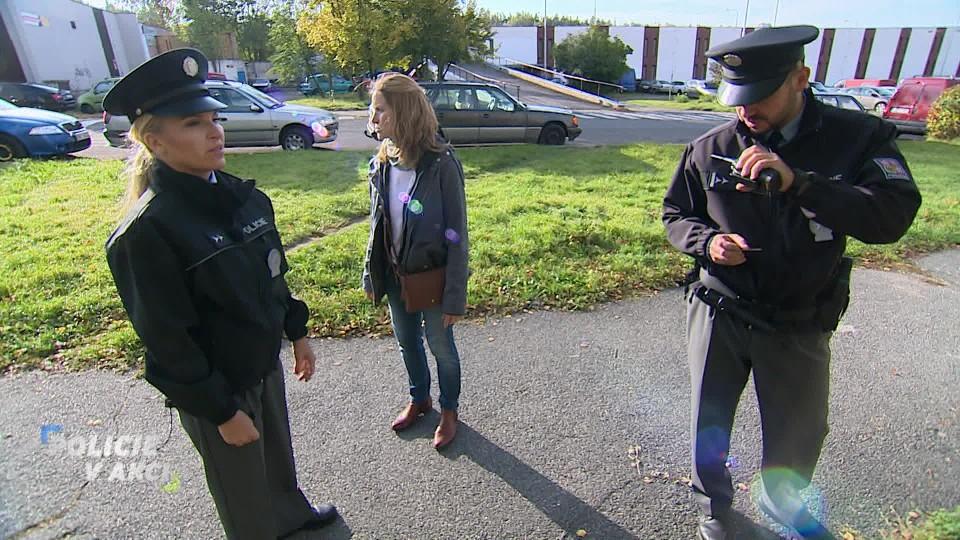 Policie v akci (32)