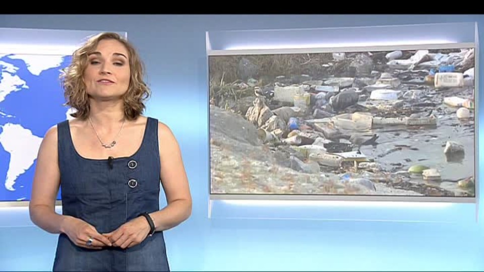 SVĚT: Olympiáda bude v žumpě, Rio zklamalo