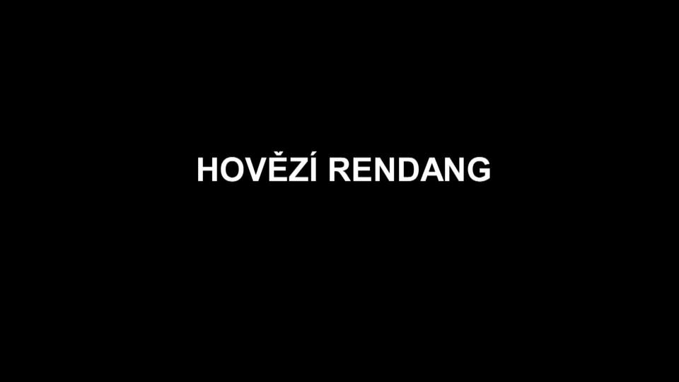 Hovězí Rendang