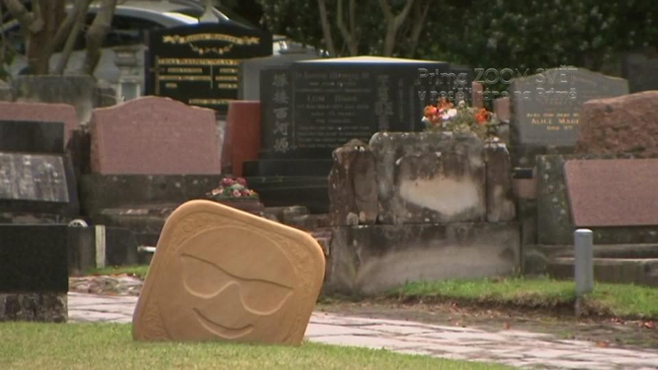 SVĚT: Sochy na největším hřbitově