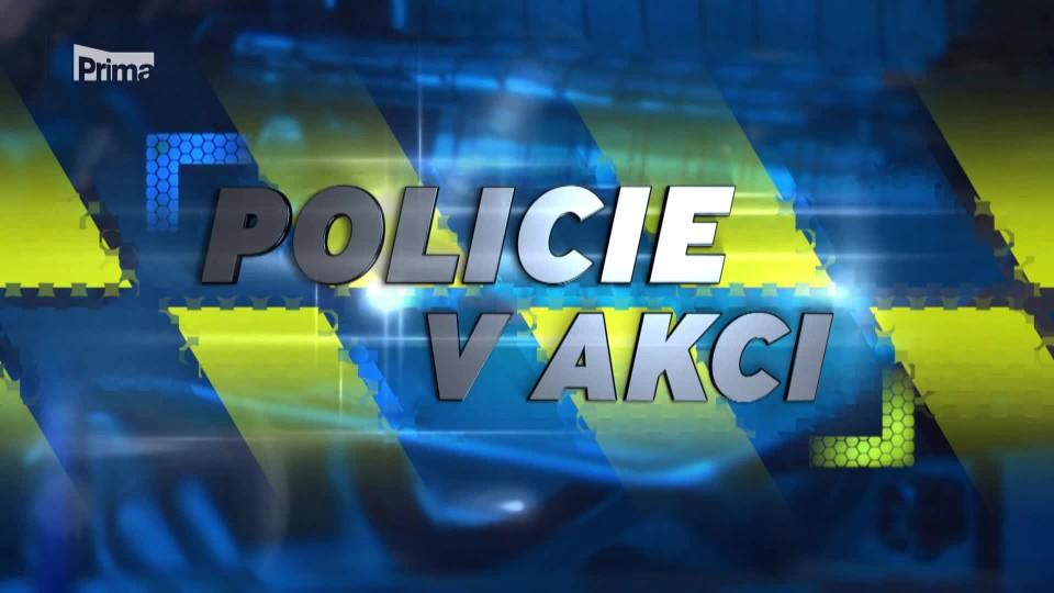 Mrtvý pes - Policie v akci