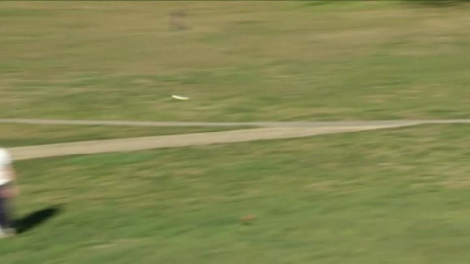 SVĚT: Freesbee disc golf