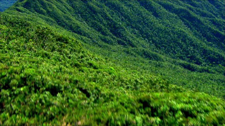 Zelená planeta (1) - upoutávka