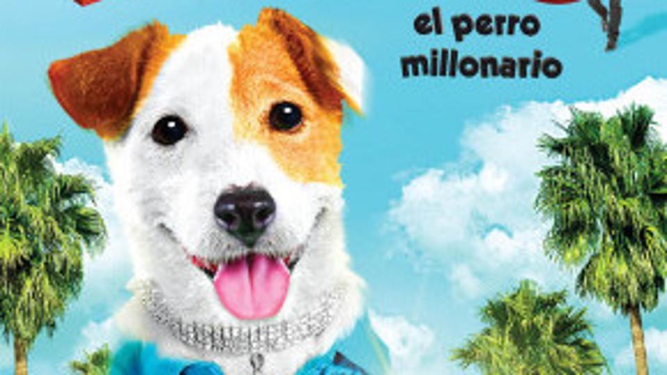 Pes Milionář