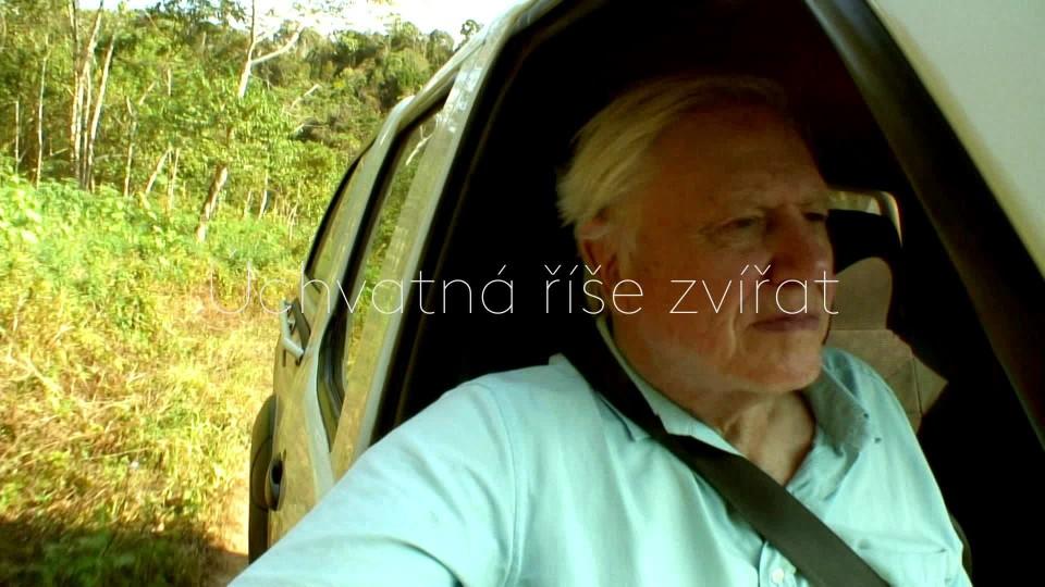 David Attenborough a obří vejce - upoutávka