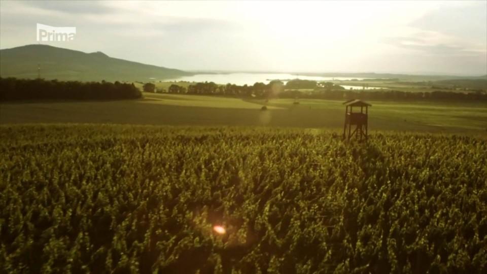 Vinaři - Teaser 4