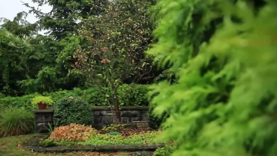 Vychytávky Ládi Hrušky - sluncem spálené zahrady
