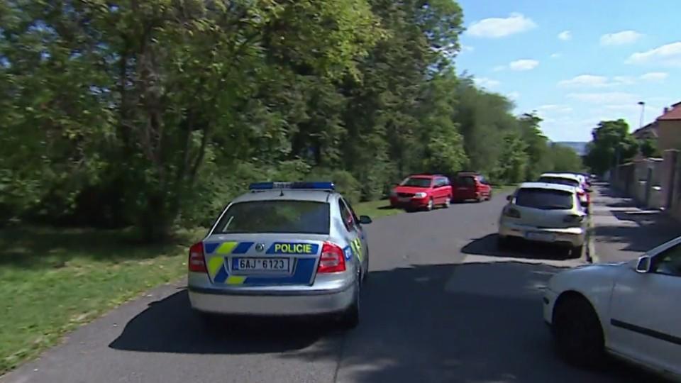 Policie v akci (9)