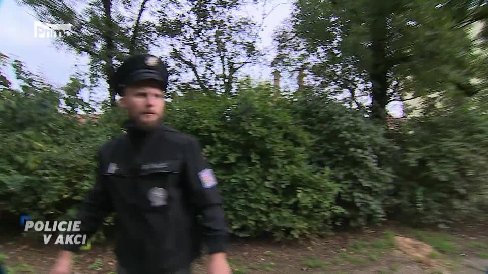 Přepadení seniorky - Policie v akci