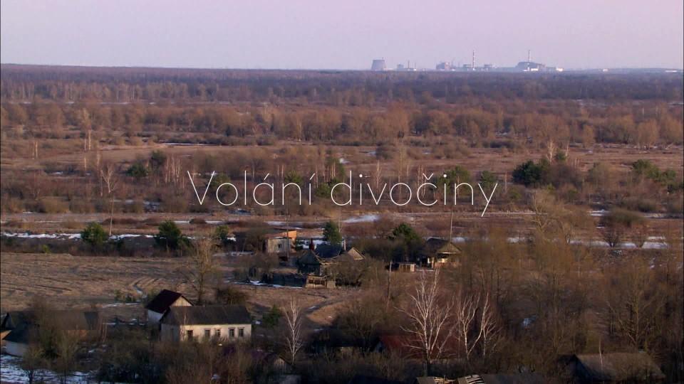 Vlci v Černobylu - upoutávka