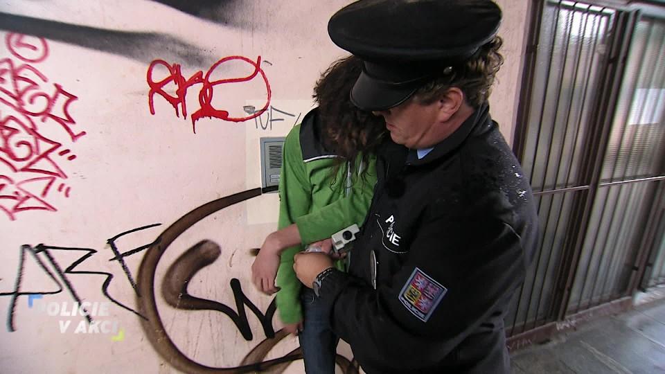 Policie v akci (13)