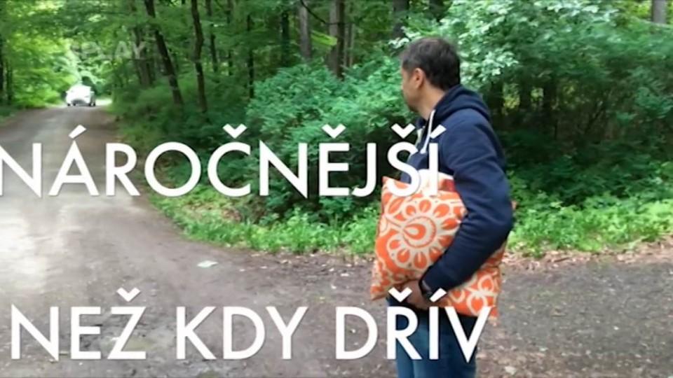 Partička - Cesta na Konopiště 2
